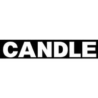 Твердотопливные котлы длительного горения CANDLE