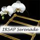 Эксклюзивные полотенцесушители IRSAP Serenade!